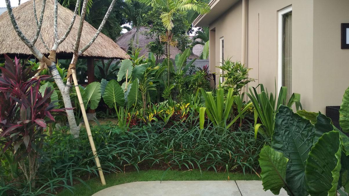 Jasa Tukang Taman Dan Vertical Garden Guslie Garden