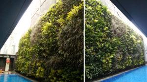 vertical-garden-system