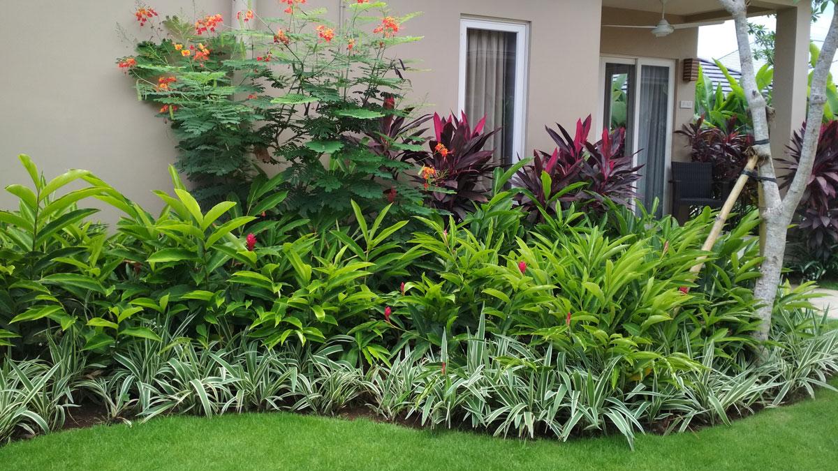 Taman Tropis Villa di Bali